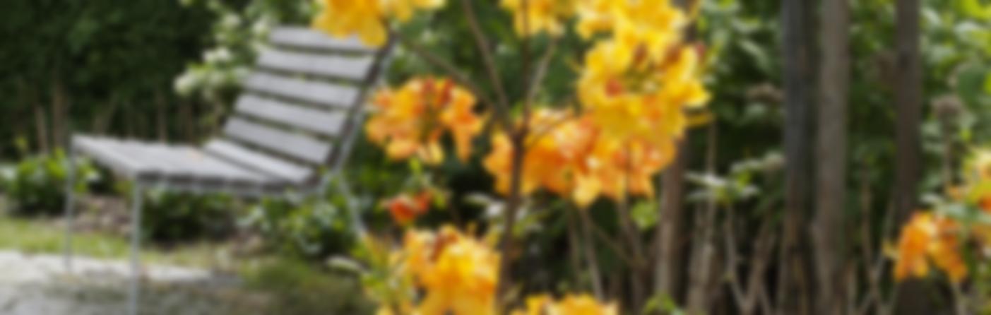 projekty rodinných zahrad